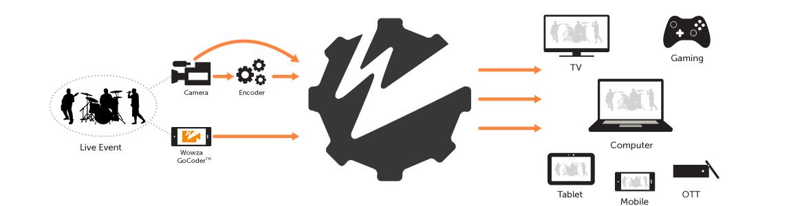 wowza-live-schema